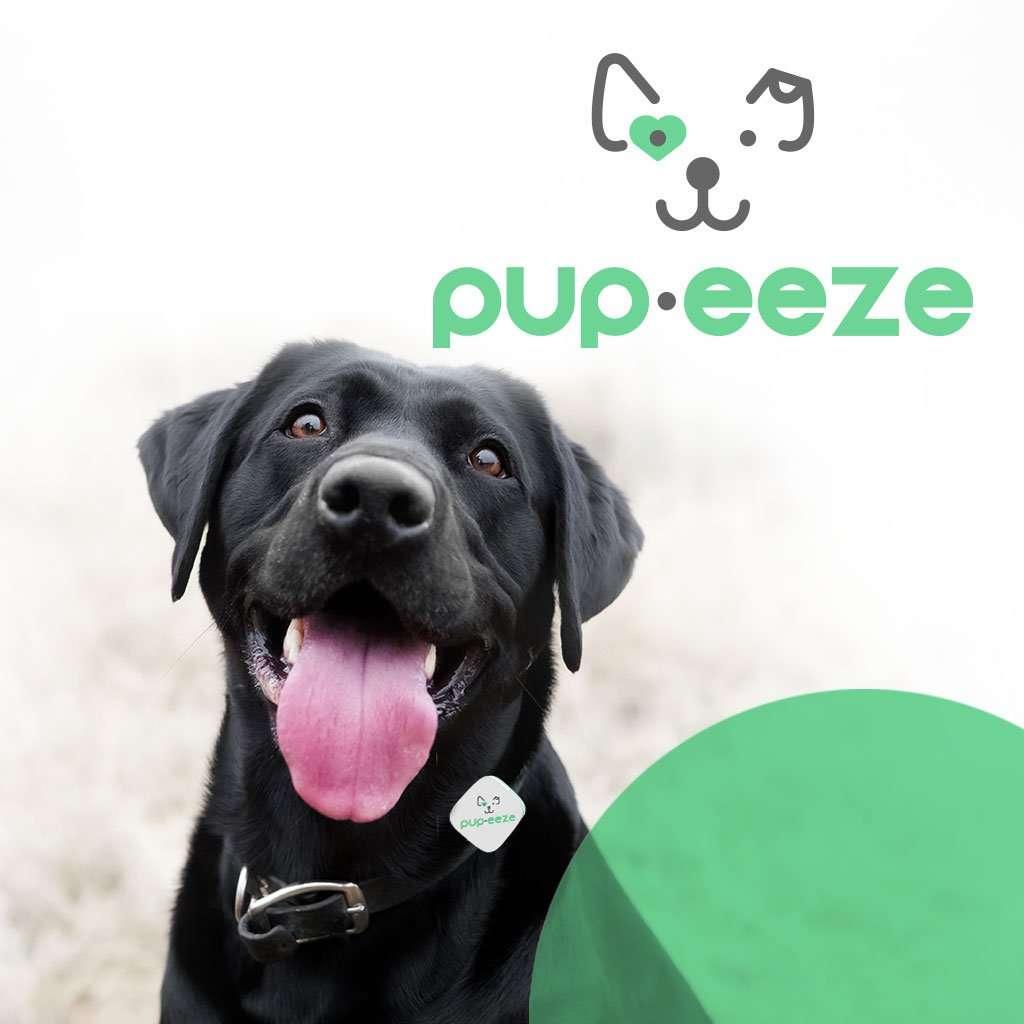 pupeeze brand identity